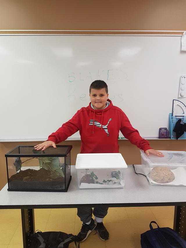 A student stands at the front of the classroom in front of aquariums