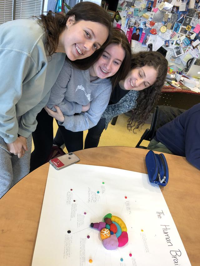 Students model a human brain out of clay